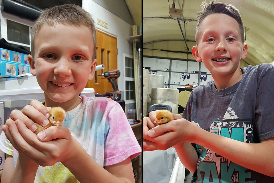 The Neusch boys are raising 38 chickens, and started a garden