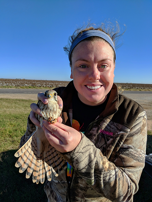 Madeleine Thornley holding a female American Kestrel