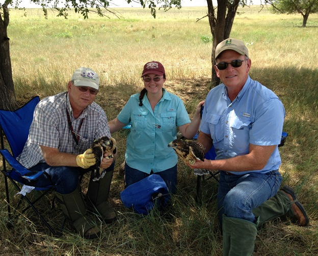 Texas Tech University doctoral student Katherine Watson, Pantex Wildlife Biologist Jim Ray (left), and Pantex Agronomist Monty Schoenhals (right)